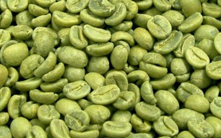 export.coffee-green-beans